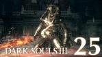 #25【PS4版】 DARK SOULS Ⅲ (ダークソウル 3) 【大書庫 #02】