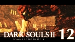 #12【PC版】SCHOLAR OF THE FIRST SIN | DARKSOULS Ⅱ【黒渓谷】