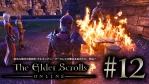 #12 The Elder Scrolls Online [エルダー・スクロールズ・オンライン]