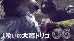 【ICO・NICO・TRICO】人喰いの大鷲トリコ #06
