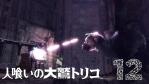 【ICO・NICO・TRICO】人喰いの大鷲トリコ #12